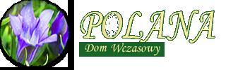 logo Polana
